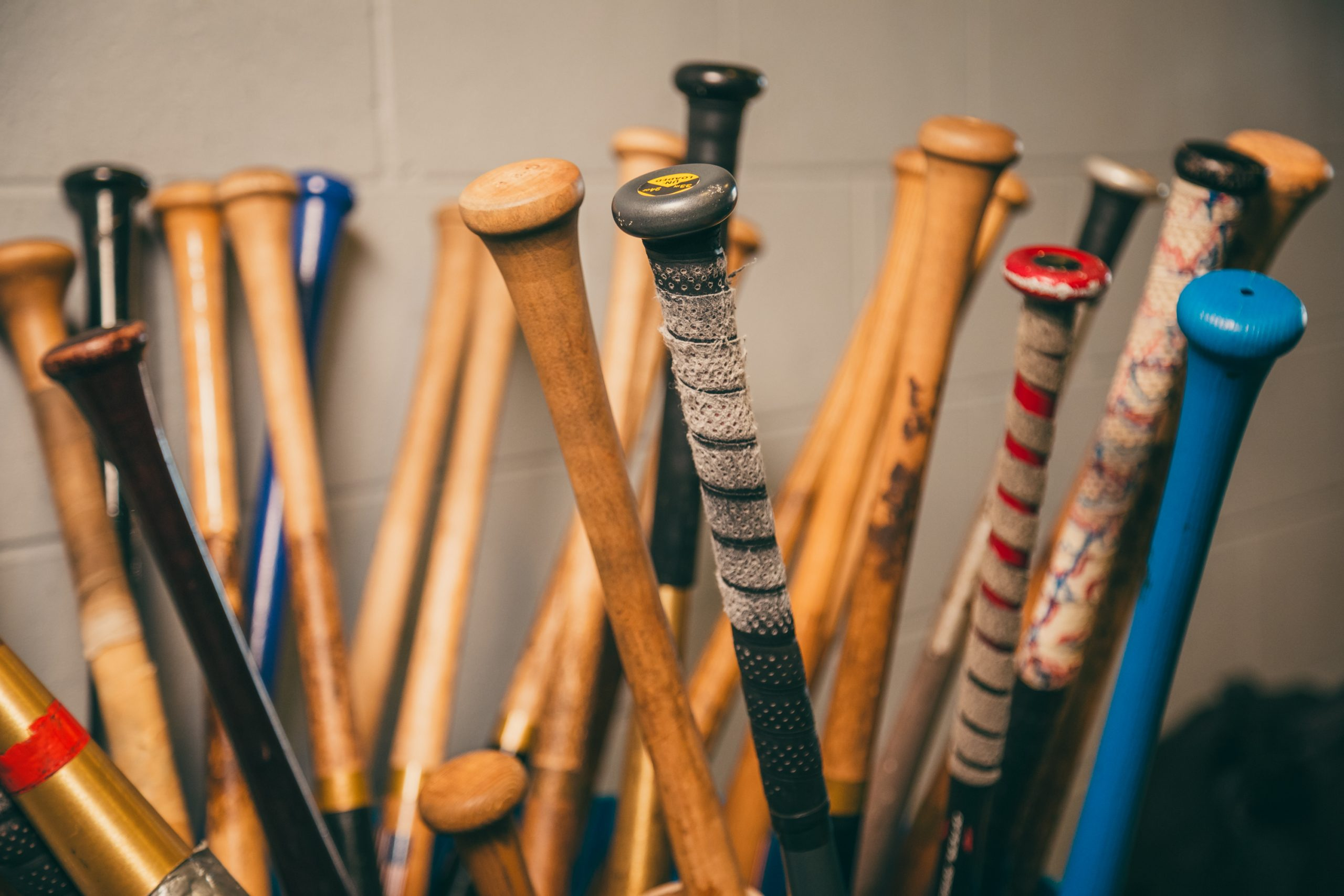 Bats, Bats, Bats….Interesting Tidbits and Facts about Baseball Bats! Bats for Kids,
